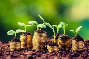 ATENȚIE! Noi prevederi și aspecte de subvenționare a producătorilor agricoli  afectați de calamitățile naturale