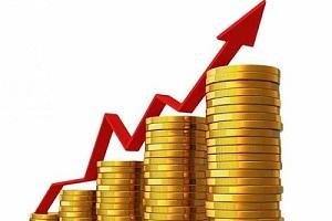 Peste 29,1 miliarde lei încasate de Serviciul Fiscal de Stat în 9 luni ale anului curent