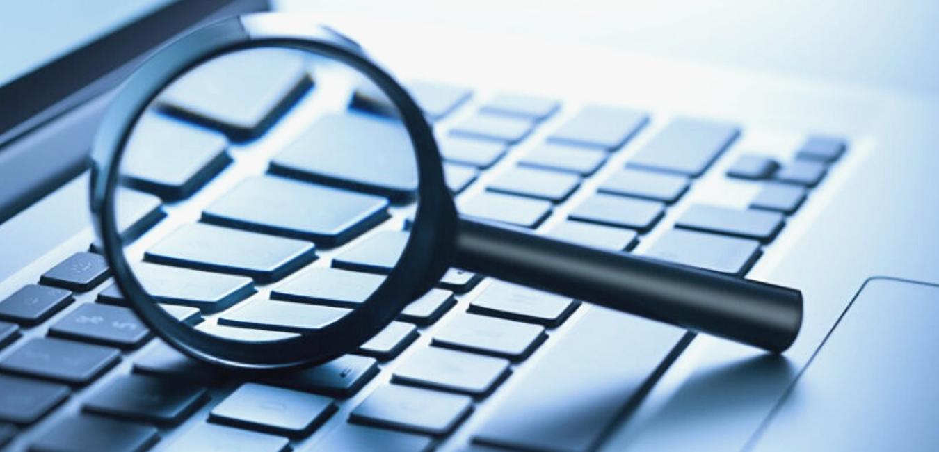 SFS a lansat modulul de căutare aferent verificării beneficiarilor veniturilor salariale